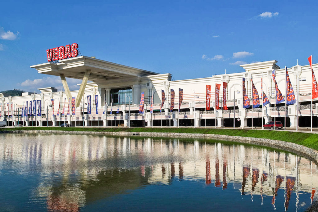 Vegas Crocus