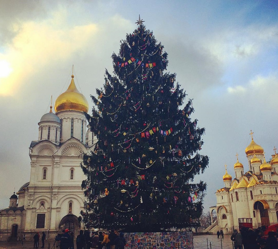 The main Russian Christmas tree has appeared at the Kremlin's Sobornaya Square