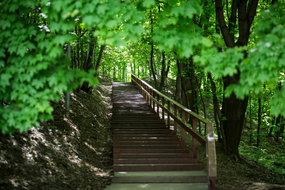 «Green Week» in the Gorky Park